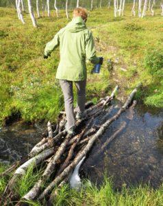 fun negotiating a bridge of sticks